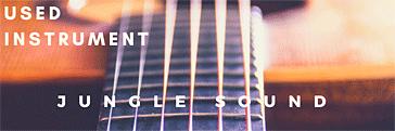 東京 中古楽器 JUNGLE SOUND (ジャングル・サウンド)